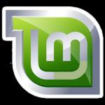 [Linux] Linux Mint で ZFS をマウントする